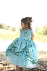 princess-gown-2